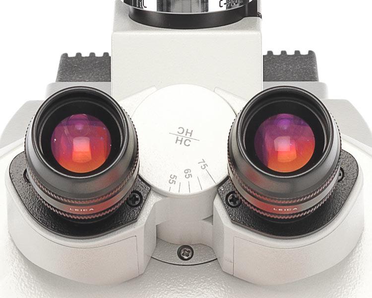 正置偏光显微镜徕卡DM4P